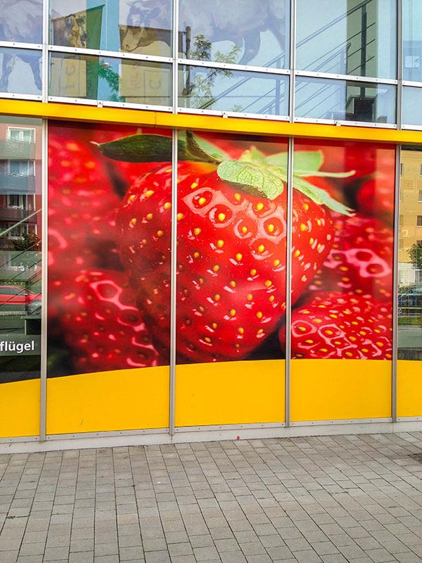 Basic-Erdbeere-Nachher