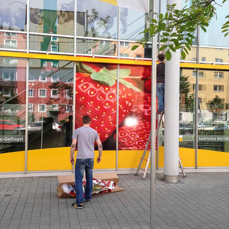 Montage-Erdbeere-3